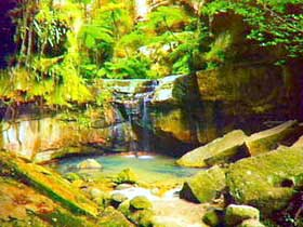 Carnarvon Gorge Carnarvon National Park - Accommodation Mermaid Beach