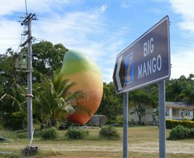 Big Mango - Accommodation Mermaid Beach