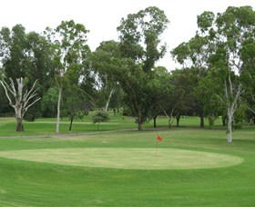 Moree Golf Club - Accommodation Mermaid Beach