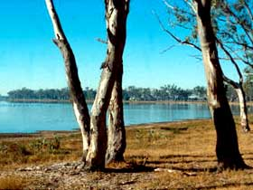 Lake Broadwater Conservation Park - Accommodation Mermaid Beach