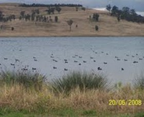 Lake Liddell Recreation Area - Accommodation Mermaid Beach