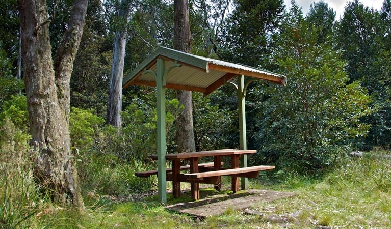 Devils Hole lookout walk and picnic area - Accommodation Mermaid Beach