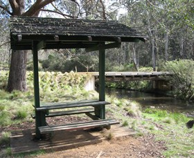 Barrington Tops State Forest - Accommodation Mermaid Beach