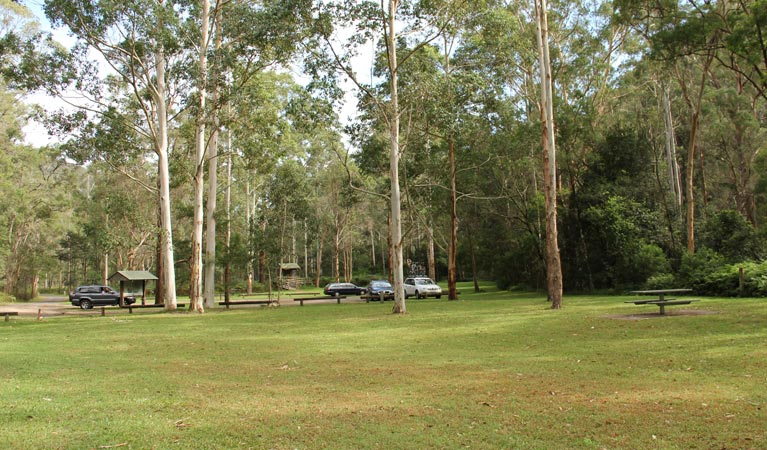 Mill Creek picnic area - Accommodation Mermaid Beach