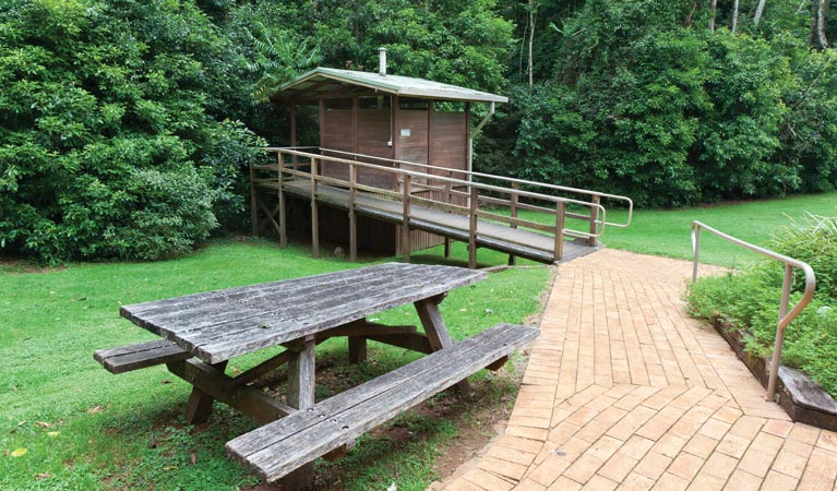 The Glade picnic area - Accommodation Mermaid Beach