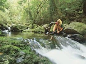 Lower Ballanjui Falls - Accommodation Mermaid Beach