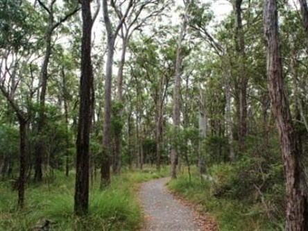Caboolture Regional Environment Education Centre - Walking Trails