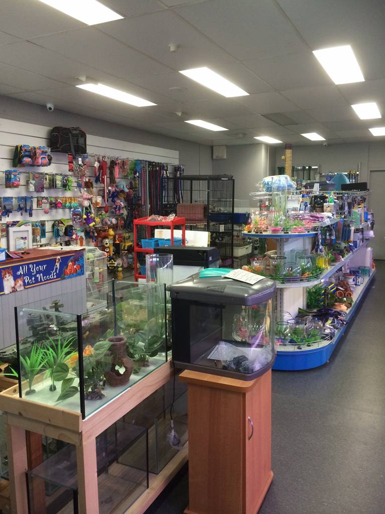 Nambour Pet Shop - Accommodation Mermaid Beach