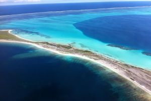 Abrolhos Islands Fixed-Wing Scenic Flight - Accommodation Mermaid Beach