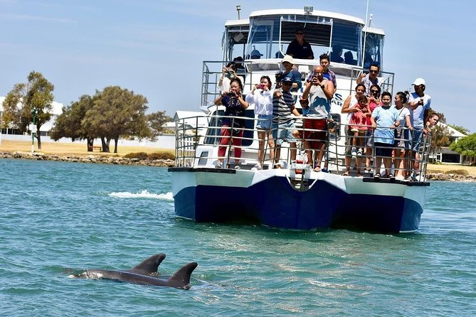 Mandurah Dolphin and Scenic Canal Cruise - Accommodation Mermaid Beach