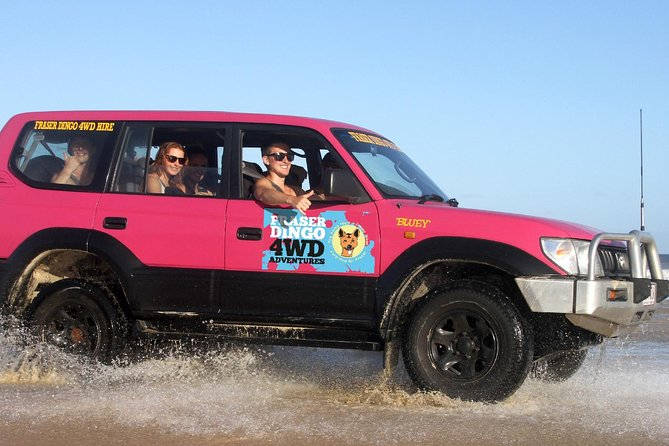 2-Day Fraser Island 4WD Tag-Along Tour at Beach House from Hervey Bay - Accommodation Mermaid Beach
