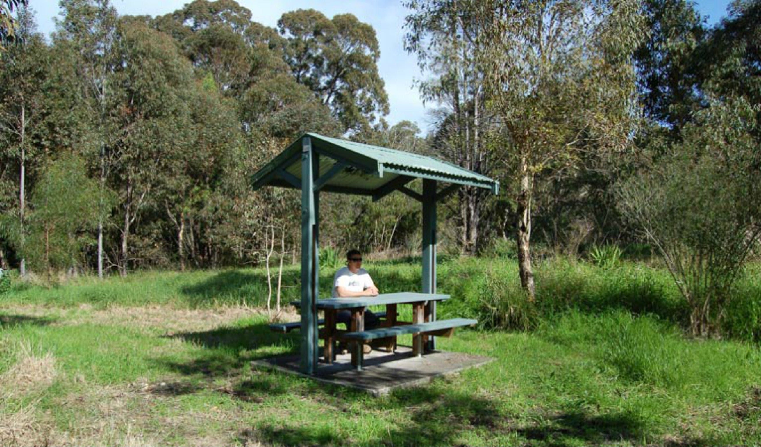 Alexanders picnic area - Accommodation Mermaid Beach