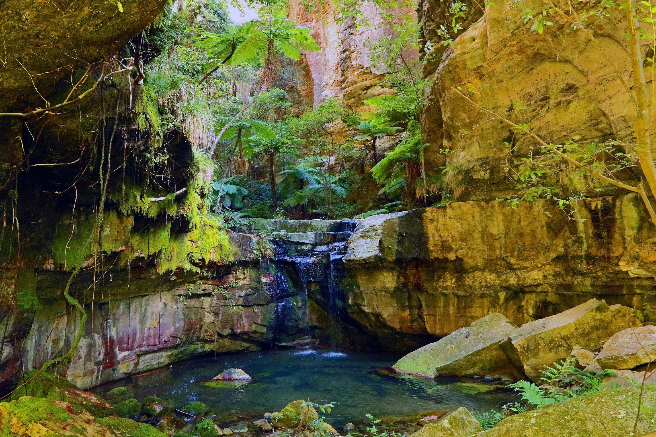 Glimpse of the Outback 5 Day Tour - Roma and Surrounds - Accommodation Mermaid Beach