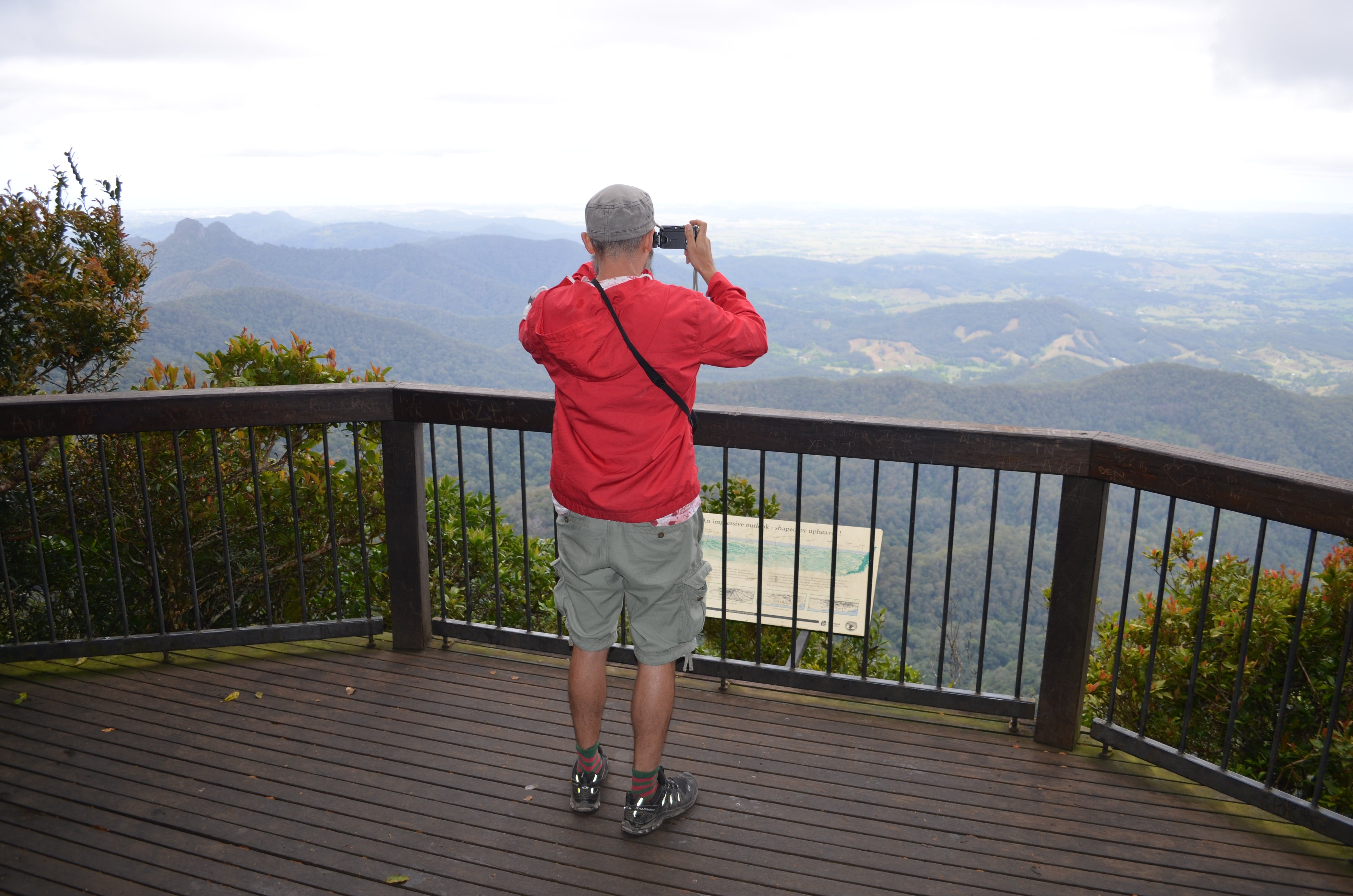 Best of All lookout track Springbrook National Park - Accommodation Mermaid Beach