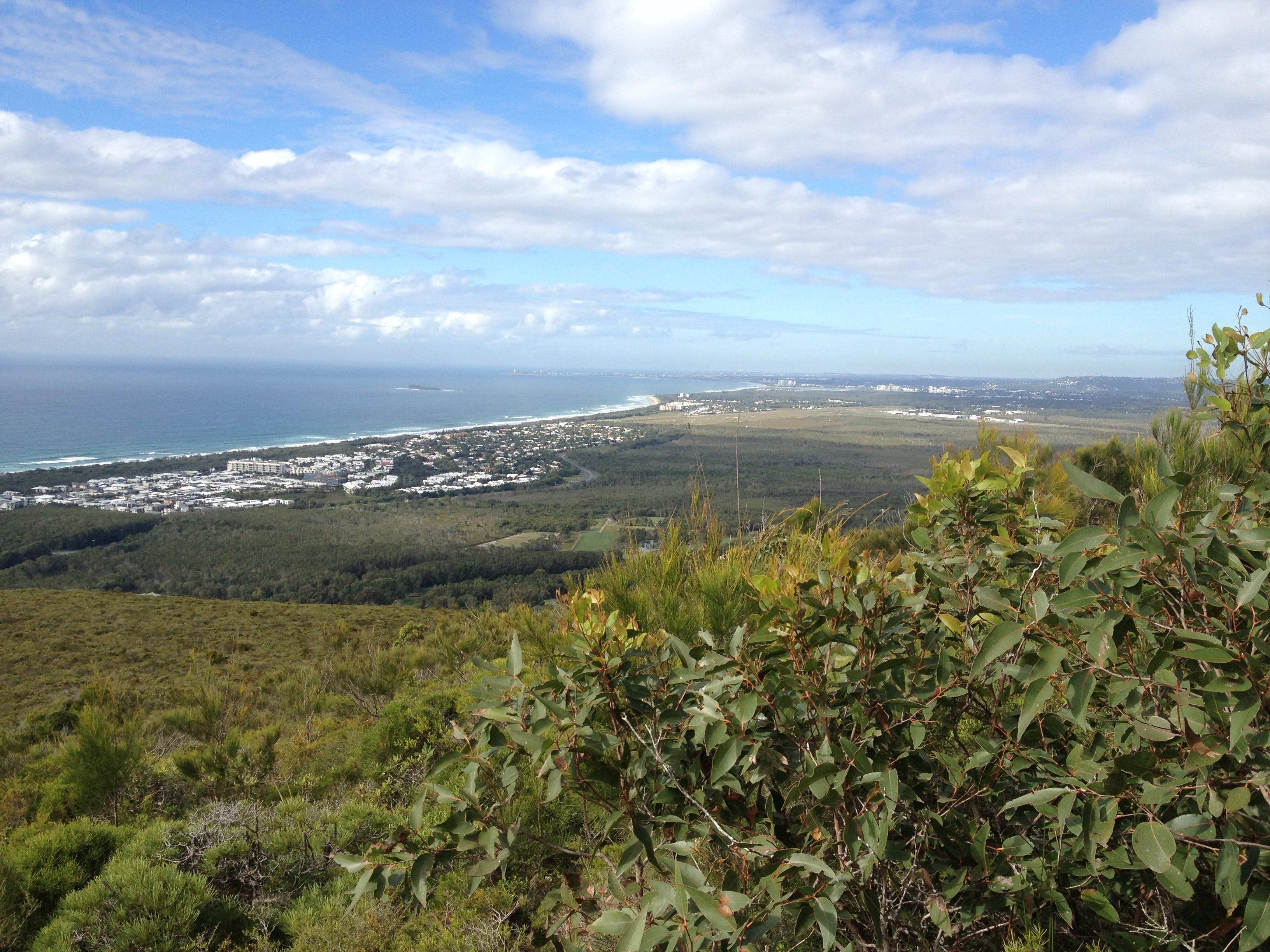 Mount Coolum National Park - Accommodation Mermaid Beach
