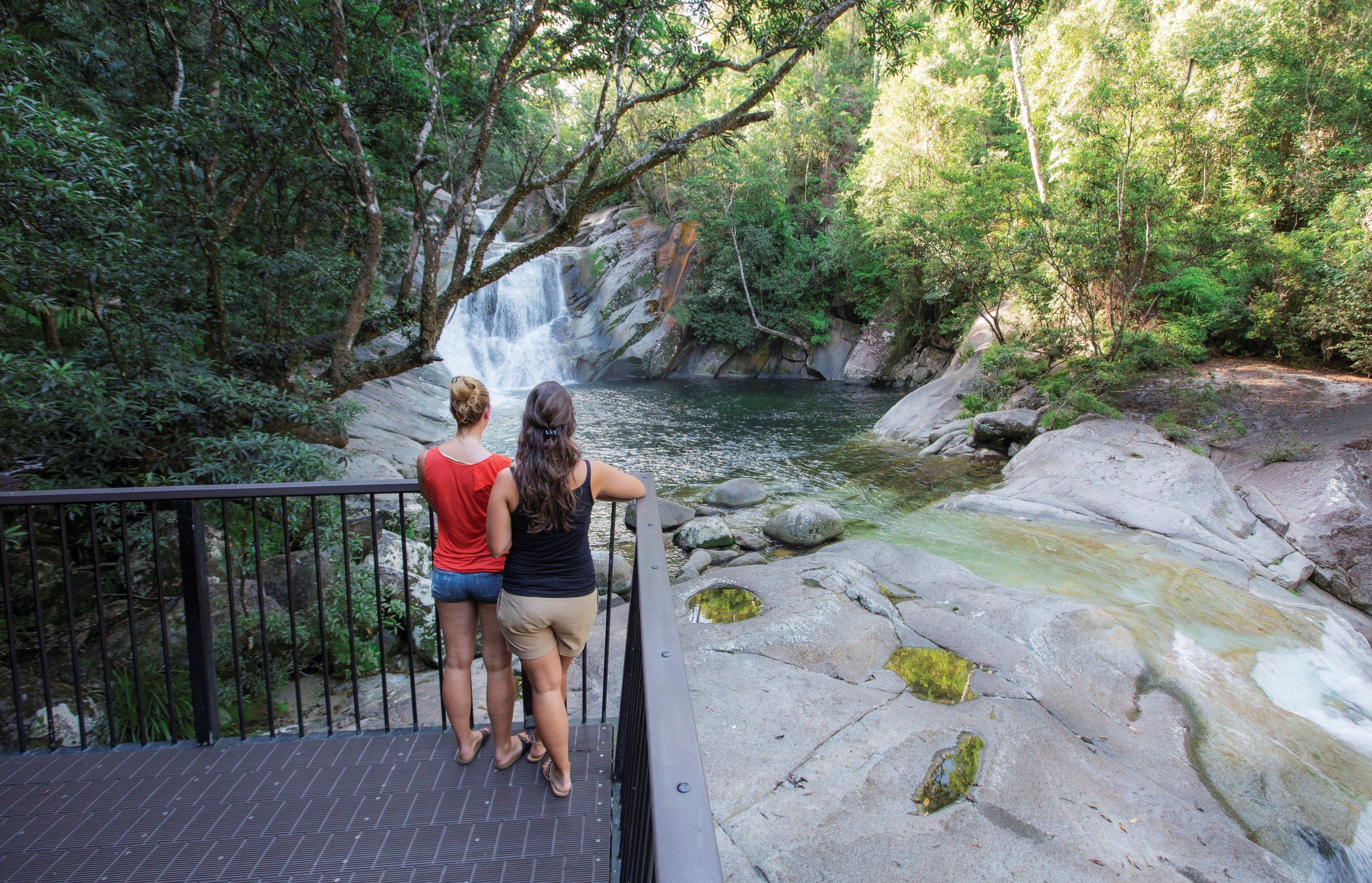 Josephine Falls walking track Wooroonooran National Park - Accommodation Mermaid Beach