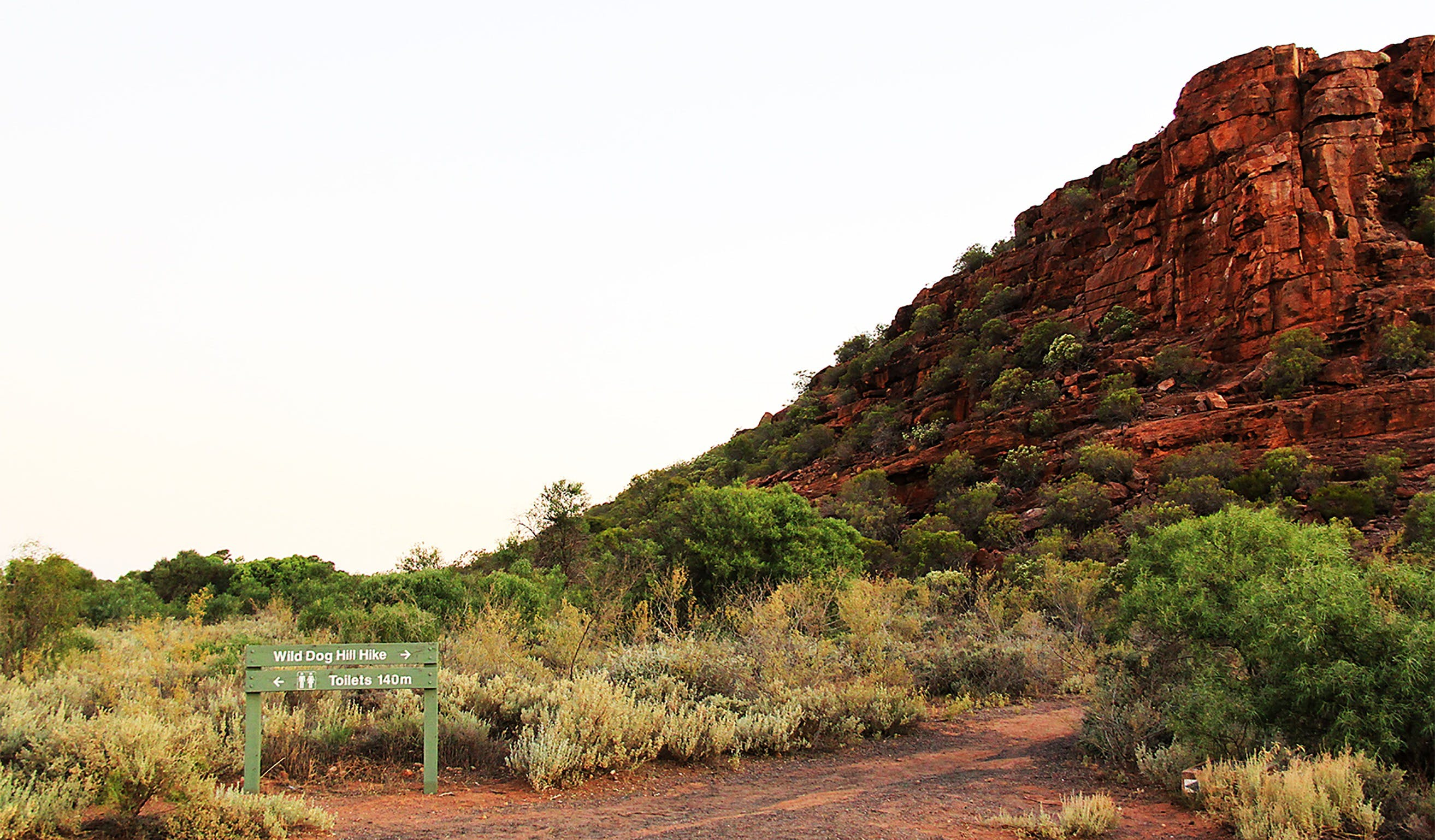 Whyalla Conservation Park - Accommodation Mermaid Beach