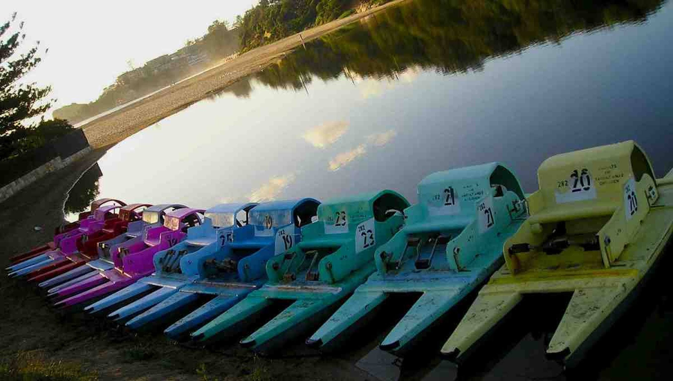 Terrigal Paddle Boats and Stand Up Paddle Boards - Accommodation Mermaid Beach