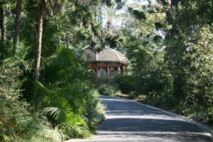 Royal Botanic Gardens Victoria - Accommodation Mermaid Beach