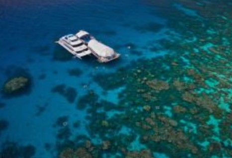 Great Adventures Reef and Green Island Cruises - Accommodation Mermaid Beach