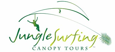 Jungle Surfing Canopy Tours and Jungle Adventures Nightwalks - Accommodation Mermaid Beach