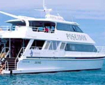 Poseidon Outer Reef Cruises - Accommodation Mermaid Beach