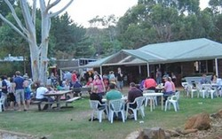 Bush Shack Brewery - Accommodation Mermaid Beach