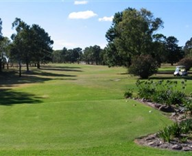 Branxton Golf Club - Accommodation Mermaid Beach