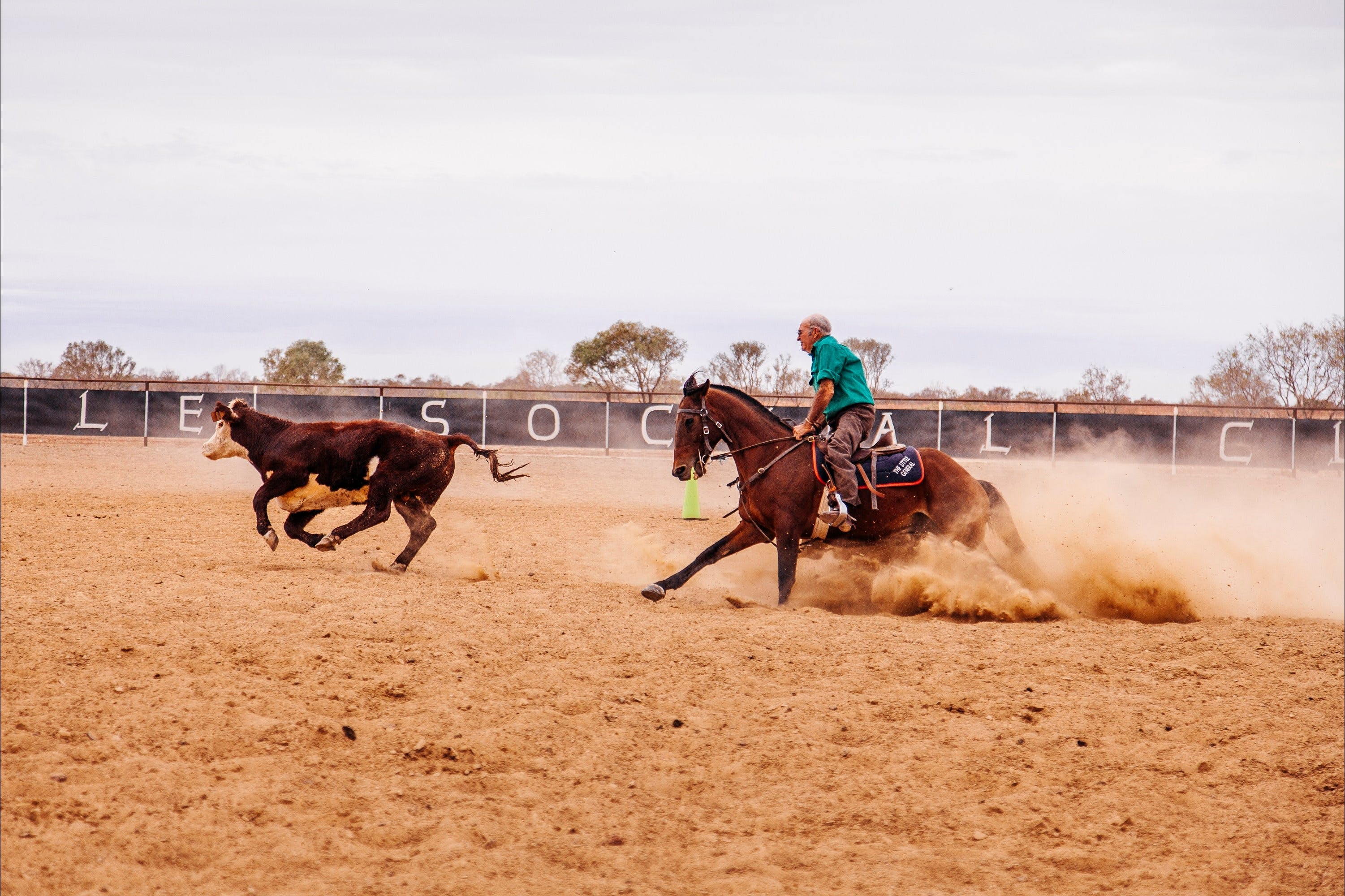 Birdsville Campdraft  Rodeo and Bronco Branding - Accommodation Mermaid Beach