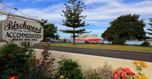 Birchwood Devonport self-contained self catering accommodation - Accommodation Mermaid Beach